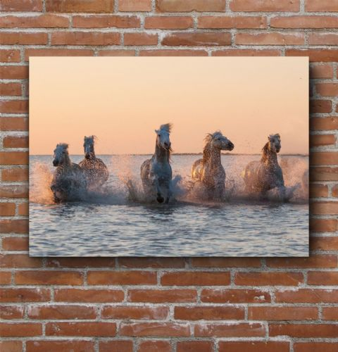 Camargue Sunrise-Rose Gold Large Canvas Print